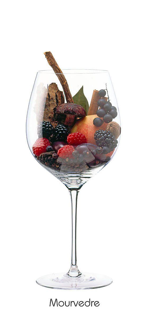 MOURVÈDRE  Blackberry, black currant, plum, peach, raspberry, mushrooms, tree bark, licorice, clove, black pepper, cinnamon, bay leaves, nutmeg