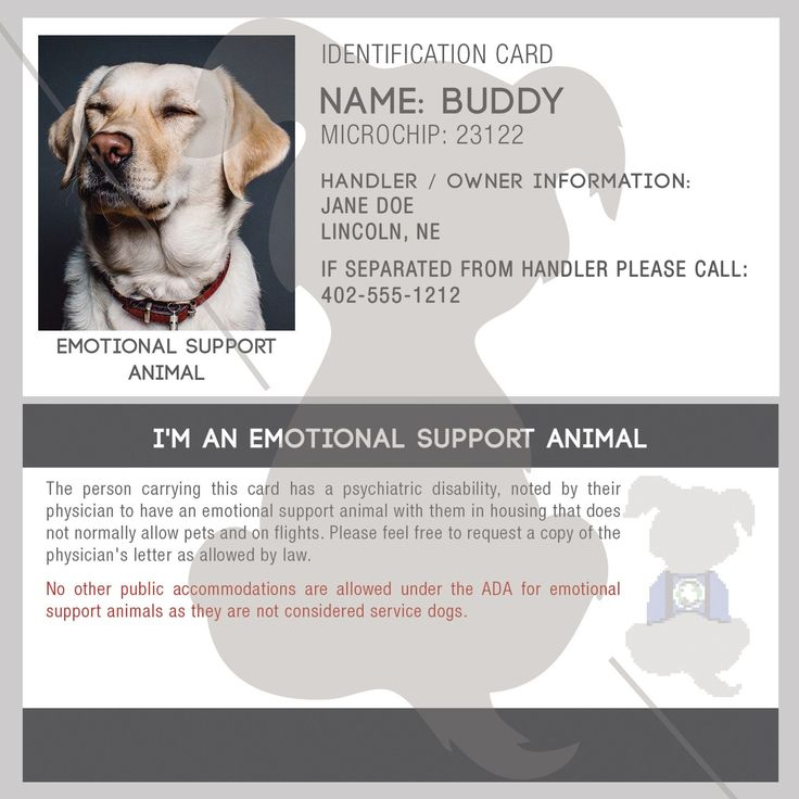 id card emotional support animal