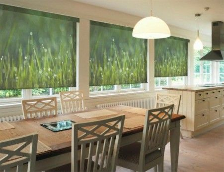 1000 Images About Roller Shades On Pinterest Roller