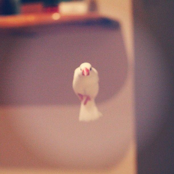 Photo by nambon • Instagram