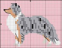 Shetland Sheepdog (blue merle) knitting pattern