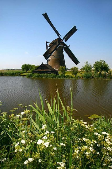 Windmill, Rotterdam, Netherlands #windmills #Netherlands #travel
