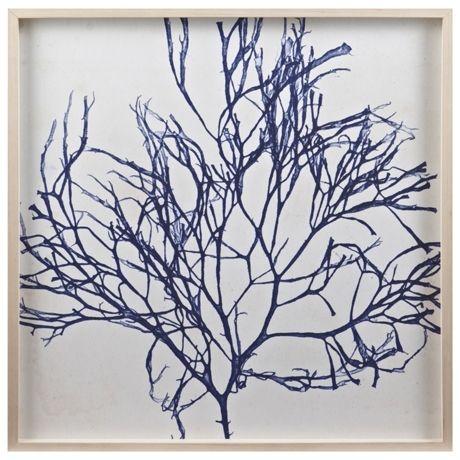 Seaweed Boxed Print I