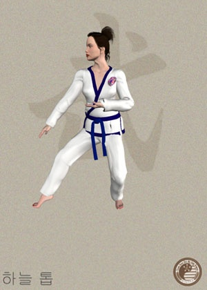 64 best tang soo do images on pinterest marshal arts combat sport pyung ahn cho dan fandeluxe Choice Image