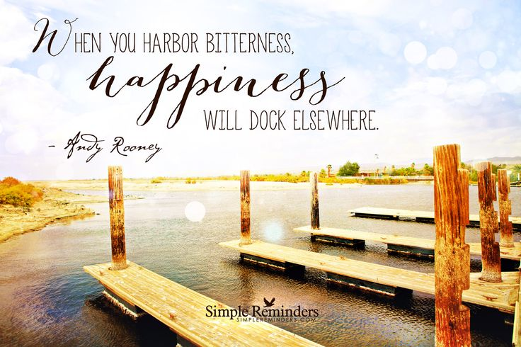 When you harbor bitterness, happiness will dock elsewhere. — Andy Rooney