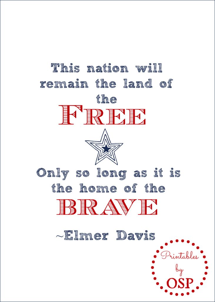 Patriotic Quotes Enchanting 30 Best Patriotic Quotes Images On Pinterest  Patriotic Quotes . Design Ideas