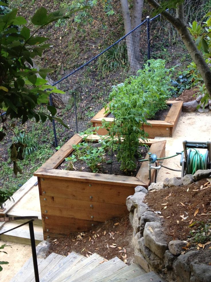 17 best images about terrace hill garden on pinterest for Terrace vegetable garden