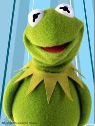 quotes by Kermit The Frog    Time's fun when your having flies.