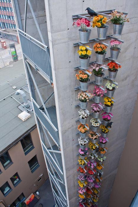 potted flowers. high rise style.