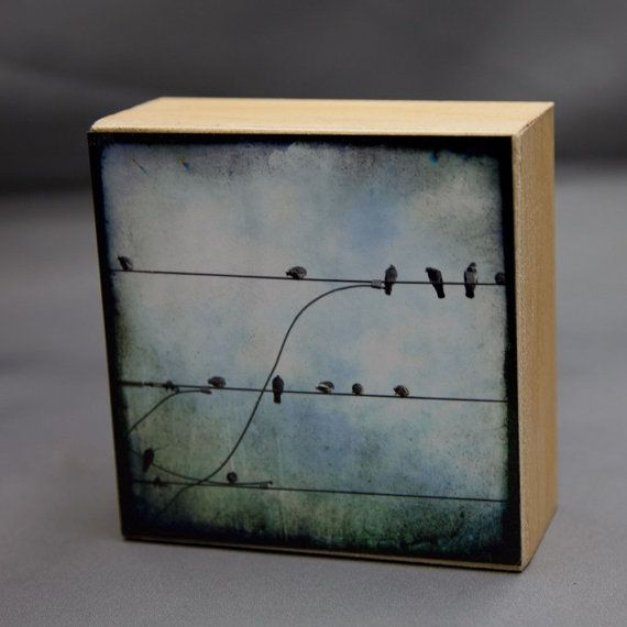 Blue Birds Photograph on Natural Wood by Ketzelphotography on Etsy