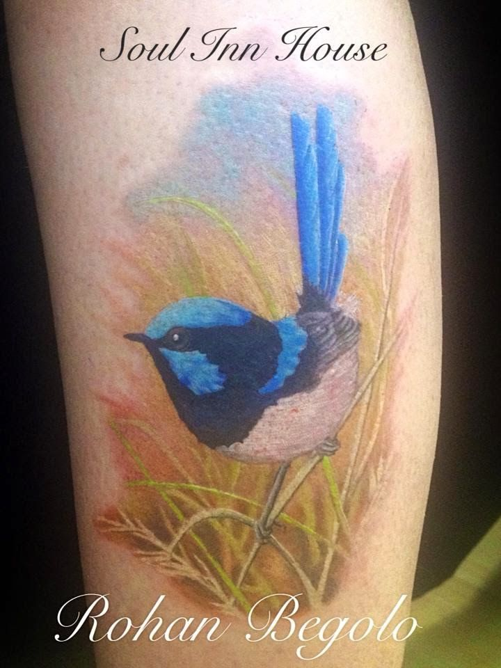 Soul Inn House: Blue wren tattoo