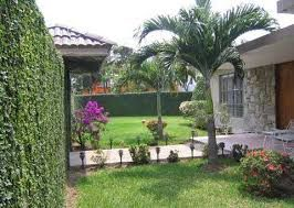 18 best images about jard n on pinterest palmas and search for Modelos jardines para casas
