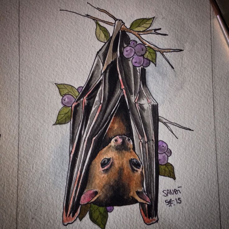 Bat Tattoos Designs Ideas And Meaning: 1000+ Ideas About Bat Tattoos On Pinterest