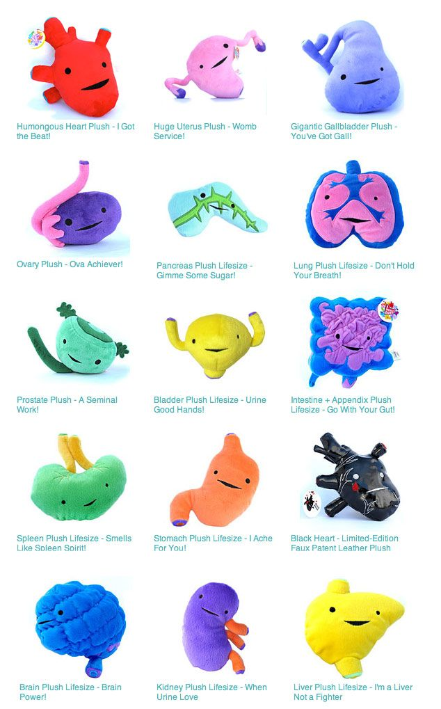 ohmygosh, hilarious! Get your future surgeon started EARLY with these handy stuffed organs!
