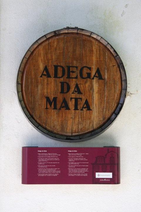 Adega da Mata, where the wine reaches its flavor.