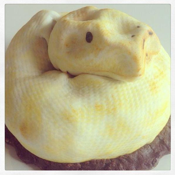#Pastel de #Pitón #Python