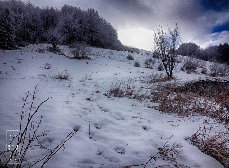 Le foto mi ricordano: - che ho vissuto tante cose belle con amici. - che mi piace guardare il terreno da vicino meno dalle altezze. - che ho sempre gli stessi vestiti da 10 anni e più.  #toscana #volgoitalia #l4l #like4like #likeforlike #igers #igersitalia #vivo_italia #italia_dev #thisisleghorn #natura #nature #neve #snow #montagna #mountain #trees #clouds #winter #inverno