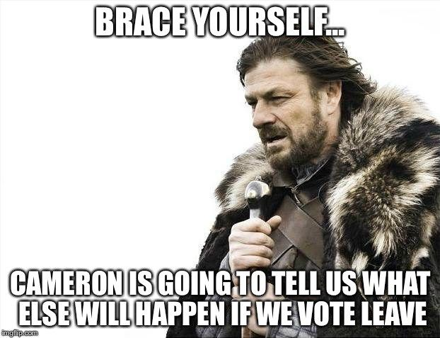 Brace yourself… Cameron is going to tell us what else will happen if we vote leave Has he mentioned Plagues and Locusts yet?