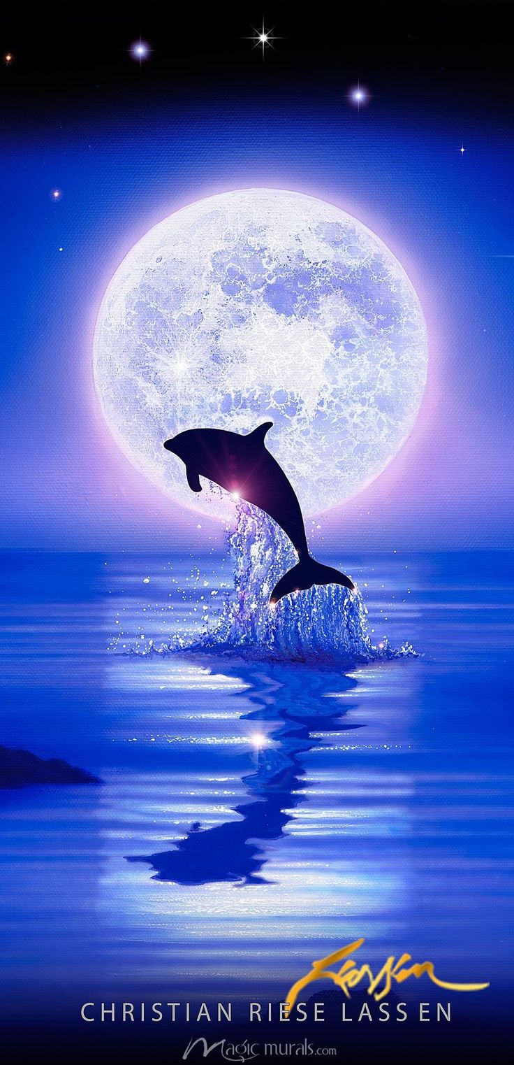 77 best ocean walls images on pinterest dolphin art orcas and iiiihii uhm this place is fantastic samissomar s pinterests