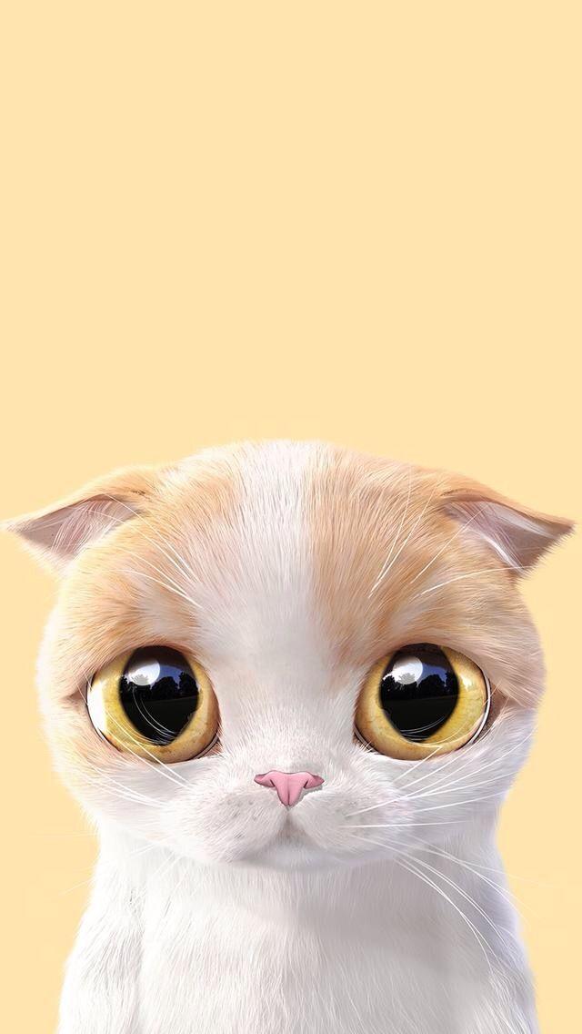 Kitten Wallpaper Petit Chaton Fond D Ecran Pour Telephone Monchatdore Com Chat Passionch Illustration De Chat Chats Adorables Animaux Mignons