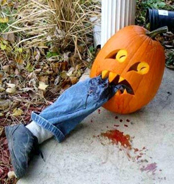 funny pumpkin carving ideas 2016 - Funny Pumpkin Carving Ideas