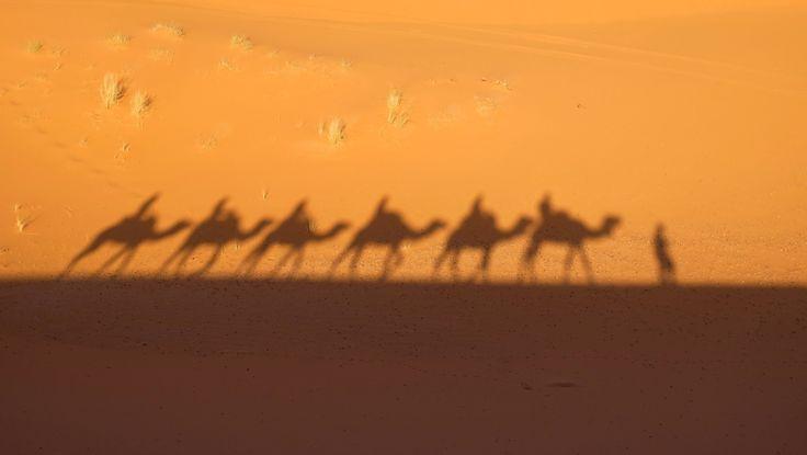 Trip in the desert - Merzouga -Morocco
