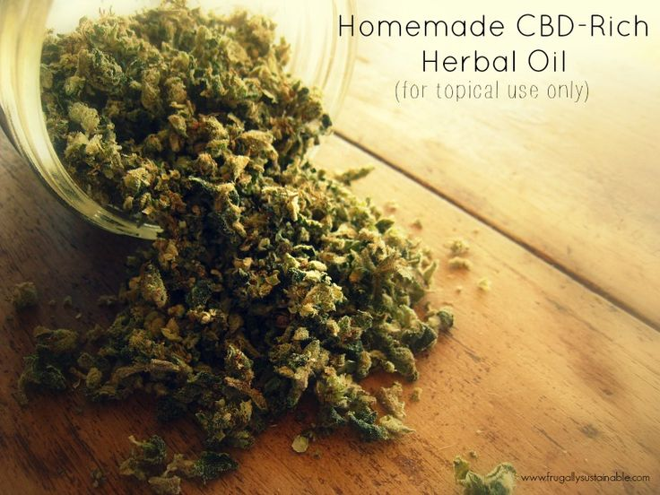 Make your own CBD-Rich Herbal Oil -- for topical use only. Nature's BEST for pain relief + skin healing