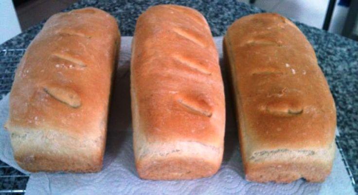 Pan molde: Libre de leche-caseína-lactosa, libre de soya-lecitina, libre de huevos, libre de nueces, libre de sésamo,libre de maní, libre de colorantes.