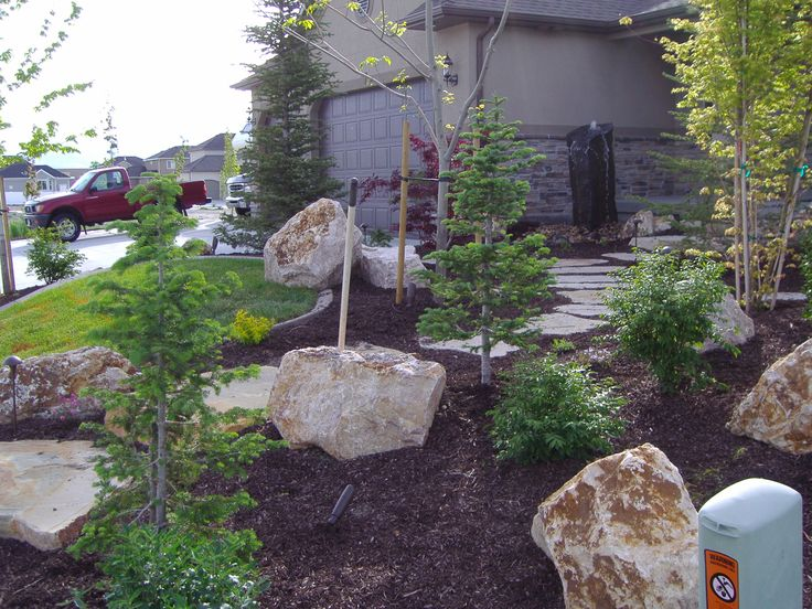 Landscaping in the front yard