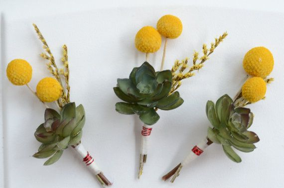 maybe add some coral or white color flower balls like these to highlight on their black suit.  Wedding Boutonnieres  Succulents and by thebreadandbutterfly, $12.50