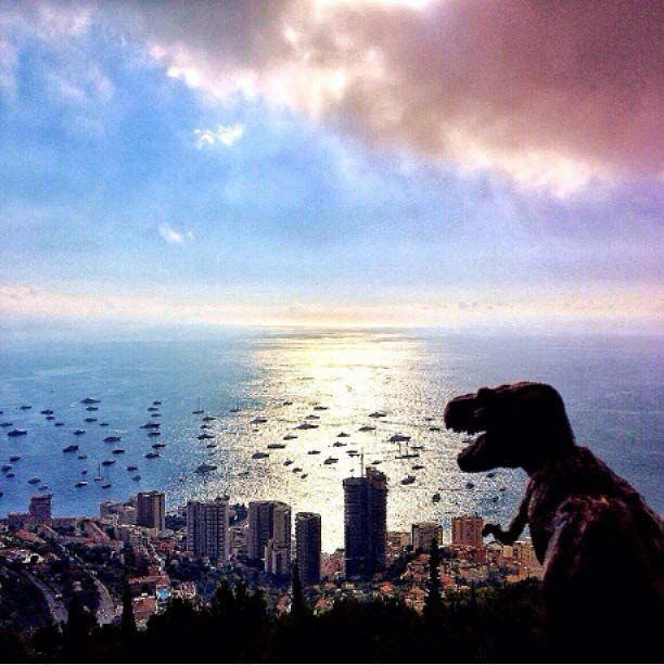 FENOMENO / PHENOMENON       #my_marina eBook       Photo courtesy of @osnuflaz [http://instagram.com/osnuflaz]