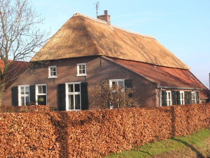 Rieten_dak_old_farmhouse.jpg 1.704×1.278 pixels