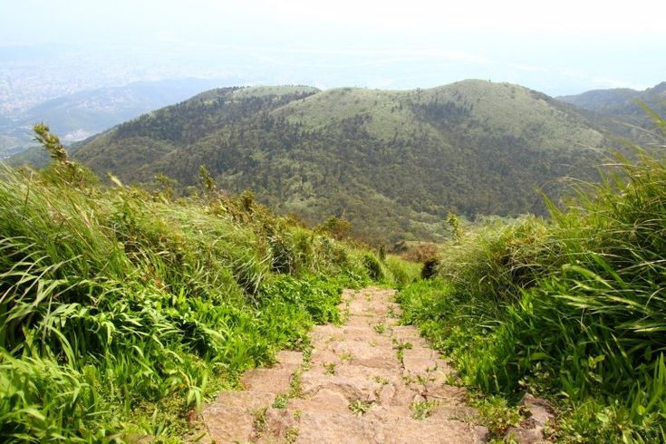 Yangmingshan National Park – Am belebten Mount Datun