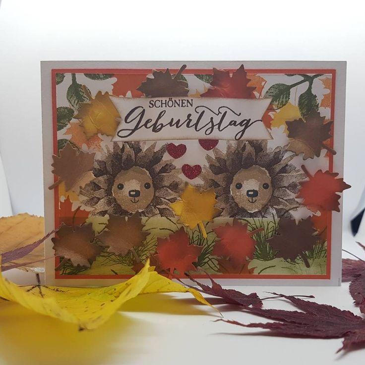 stampin up#painted harvest#SU Herbstanfang# su Igel#hedgehog#Papier Vampir#Michaela Windhager#stampin up Mondsee