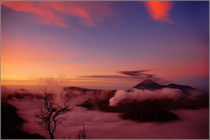 Bromo View - Bromo, Jawa Timur