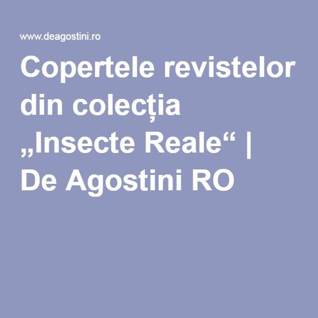"""Colecția """"Insecte Reale"""" - De Agostini RO; Cea mai mare colecţie de insecte reale, arahnide şi alte artropode de pe cinci continente. Continutul revistei este pur educational si se adreseaza intregii familii. Pe parcursul colectiei, o gama larga de familii si insecte vor fi prezentate si analizate in paginile revistelor."""