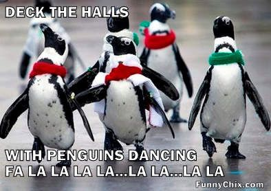 Funny Penguins | Funny Penguin Pictures