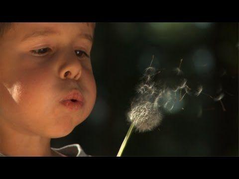 El niño necesita tiempo y espacio para   desarrollarse | educanto