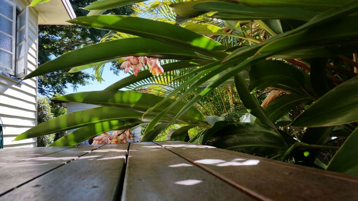 Along the deck...