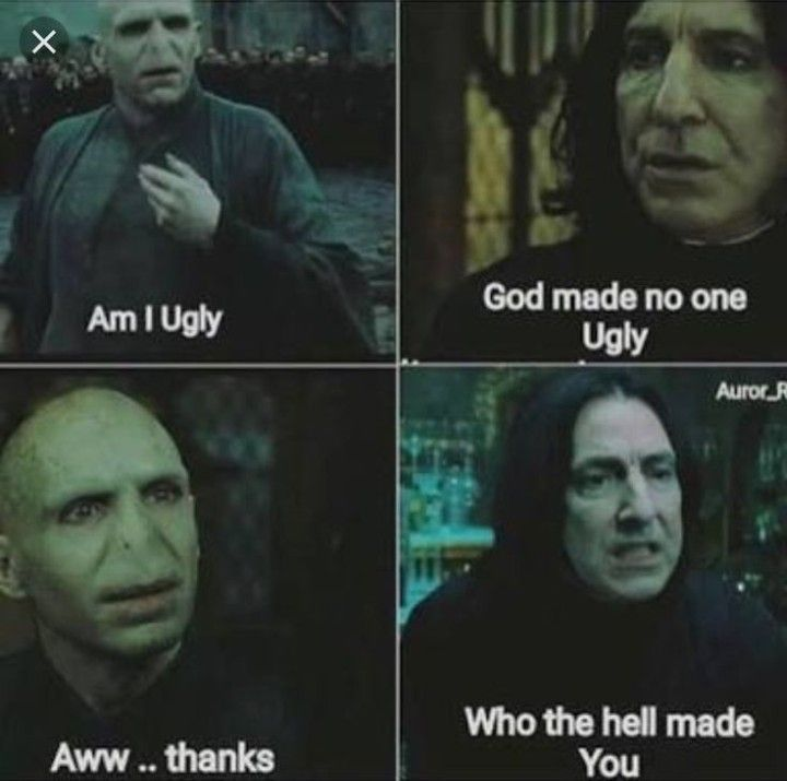Top 25 Harry Potter Memes Voldemort Harry Potter Memes Hilarious Harry Potter Jokes Harry Potter Fandom