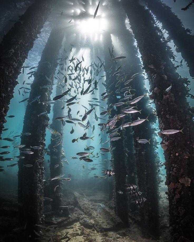 Rapid Bay, South Australia