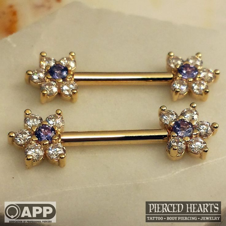 17 best images about body jewelry on pinterest daith for Pierced hearts tattoo parlor
