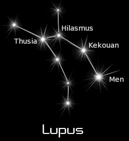 4443b3558 Lupus: Known to ancients - Wild animal of unfixed form - Until called wolf.  | Haikus | Lupus tattoo, Constellation tattoos, Wolf tattoos