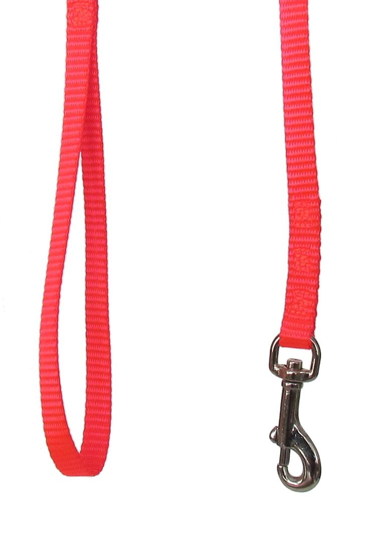 Sandia Pet Products 3/8' Blaze Orange Dog Leash - 6 Foot *** Find out more about the great product at the image link. (This is an Amazon affiliate link)