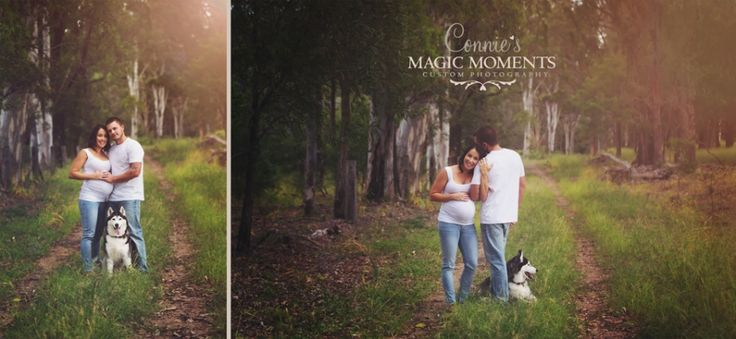 pet maternity photography