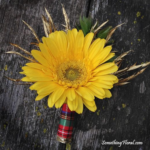 A Scottish themed boutonniere featuring a yellow gerbera daisy and gold metallic thistle, wrapped in tartan fabric to match the groom's kilt. Designed by Something Floral / Something Spectacular, this is the groom's boutonniere that matched the Scottish bridal bouquet of red roses, yellow daisies, white tulips, metallic gold thistle, and finished with a stem wrap in the groom's family/clan tartan. Photo: Urban Fire Studio. #Scottish #Scotland #Celtic #wedding #flowers #boutonniere…