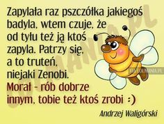 Znalezione obrazy dla zapytania humor po polsku