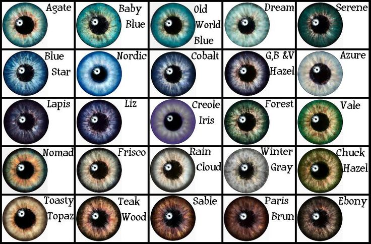 Eye Color Chart from Google Search
