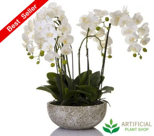 Artificial-Fake-Plants-Orchid-62cm-in-round-clay-pot