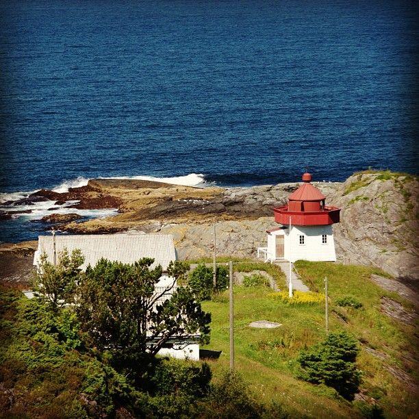 View above Skongenes lighthouse. #skongenes #sognogfjordane #dnt #i_love_norway #visitnorway